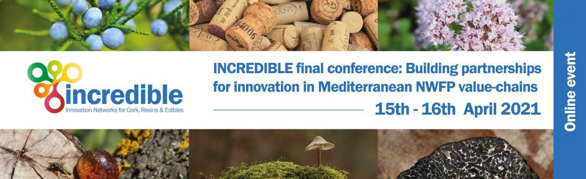 Interregional Workshop on innovative bio-based resin derivatives