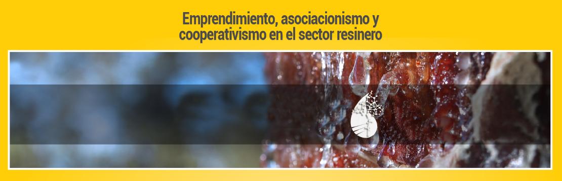 Curso de emprendimiento, asociacionismo y cooperativismo en el sector resinero