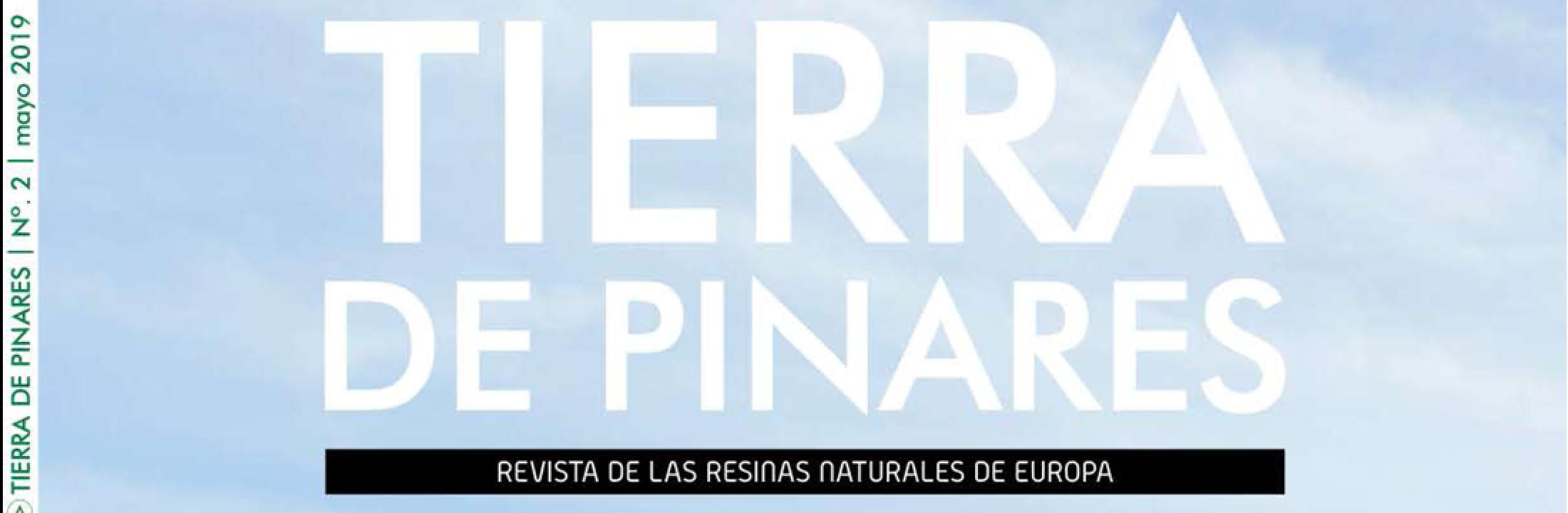 Revista Tierra de Pinares. N 2. Mayo 2019