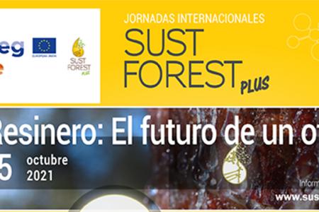 Jornadas Internacionales, El Resinero: El futuro de un oficio