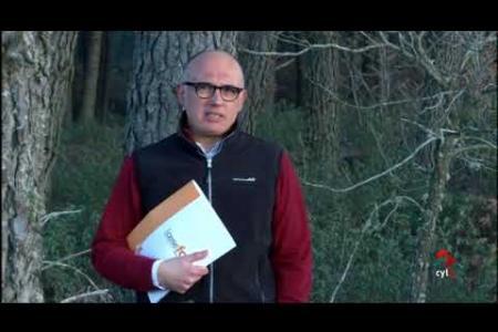 Embedded thumbnail for El Canal 8 de Soria dedica un reportaje a SustForest Plus